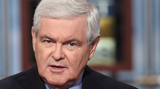 The New Face of the Tea Party is Newt Gingrich? WTF????
